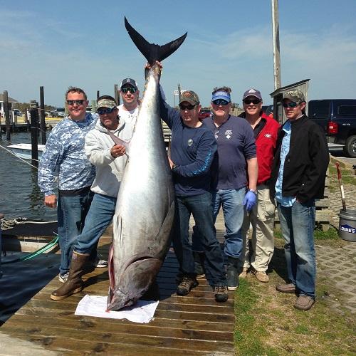 Deep Sea / Gulf Stream Charter Fishing Trips